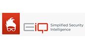 EiQ Networks logo